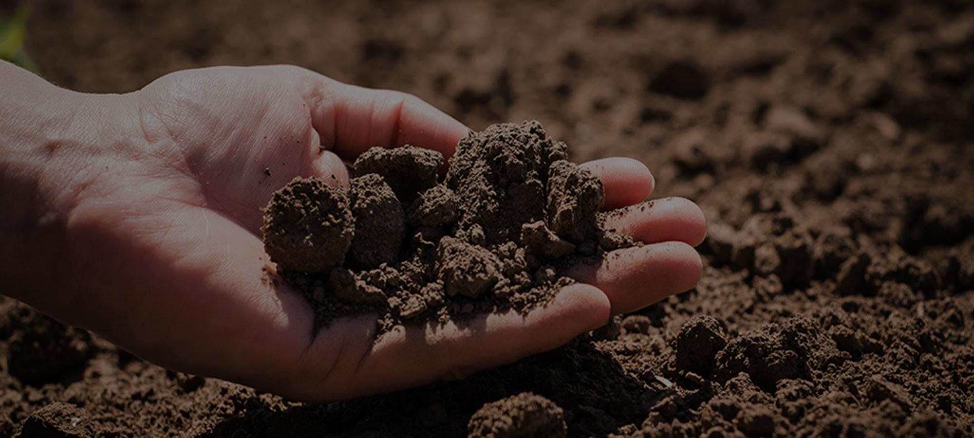 Soil Carbon Curious Part I: The Current State of Soil Health Technology