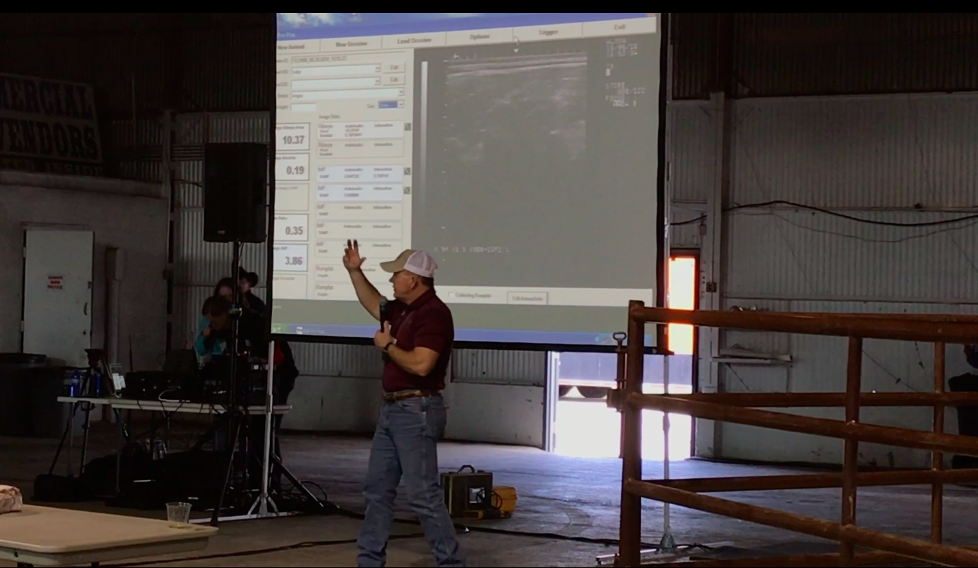 Dr. Allen Williams Explains the Application of Live Animal Ultrasound